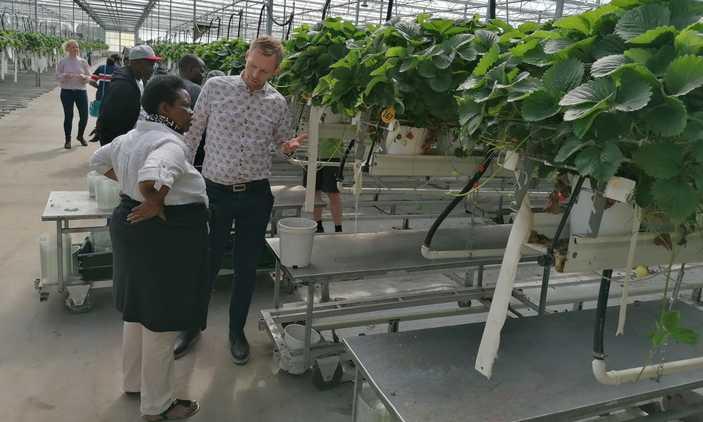 Joy Kabatsi visiting one of the farmers in Denmark